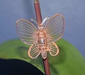 Butterfly Orchid Clips