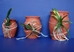 Terracotta Mounting Jars - TCMJ.5
