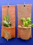Terracotta Plant Pockets