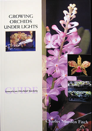 Growing Orchids Under Lights